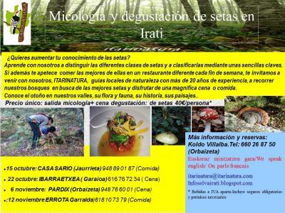 Micología y degustación de setas en Irati